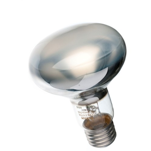 Osram  Incandescent Spot Light Bulb - 60W ES R80