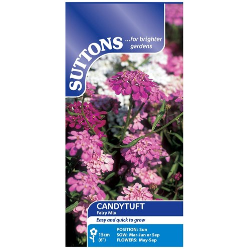 Suttons  Candytuft Fairy mix Flower Seeds