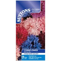 Suttons  Cornflower Tall Tutu Mix Flower Seeds