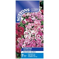 Suttons  Godetia Little Frills Mix Flower Seeds