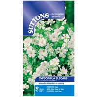 Suttons  Gypsophila Coventgard White Flower Seeds