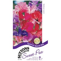 Suttons  Sweet Pea Spencer Special Flower Seeds